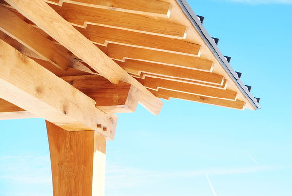 Morrison Family Education and Outreach Pavilion detail shot of corner with sun and blue skies