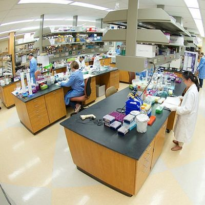 W.M. Keck Center for Transgene Research