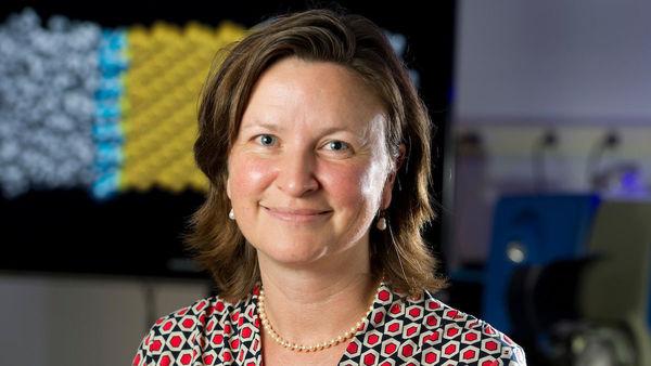 Patricia Clark Feature