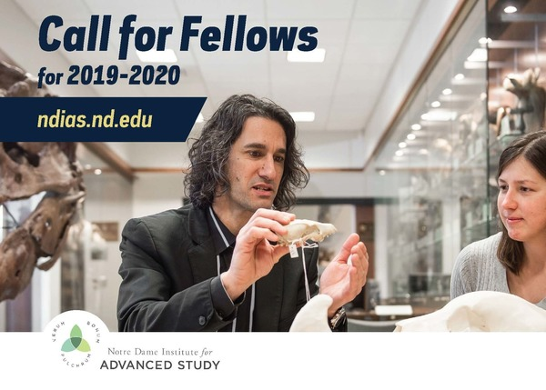 Ndias Call For Fellows 2019 2020